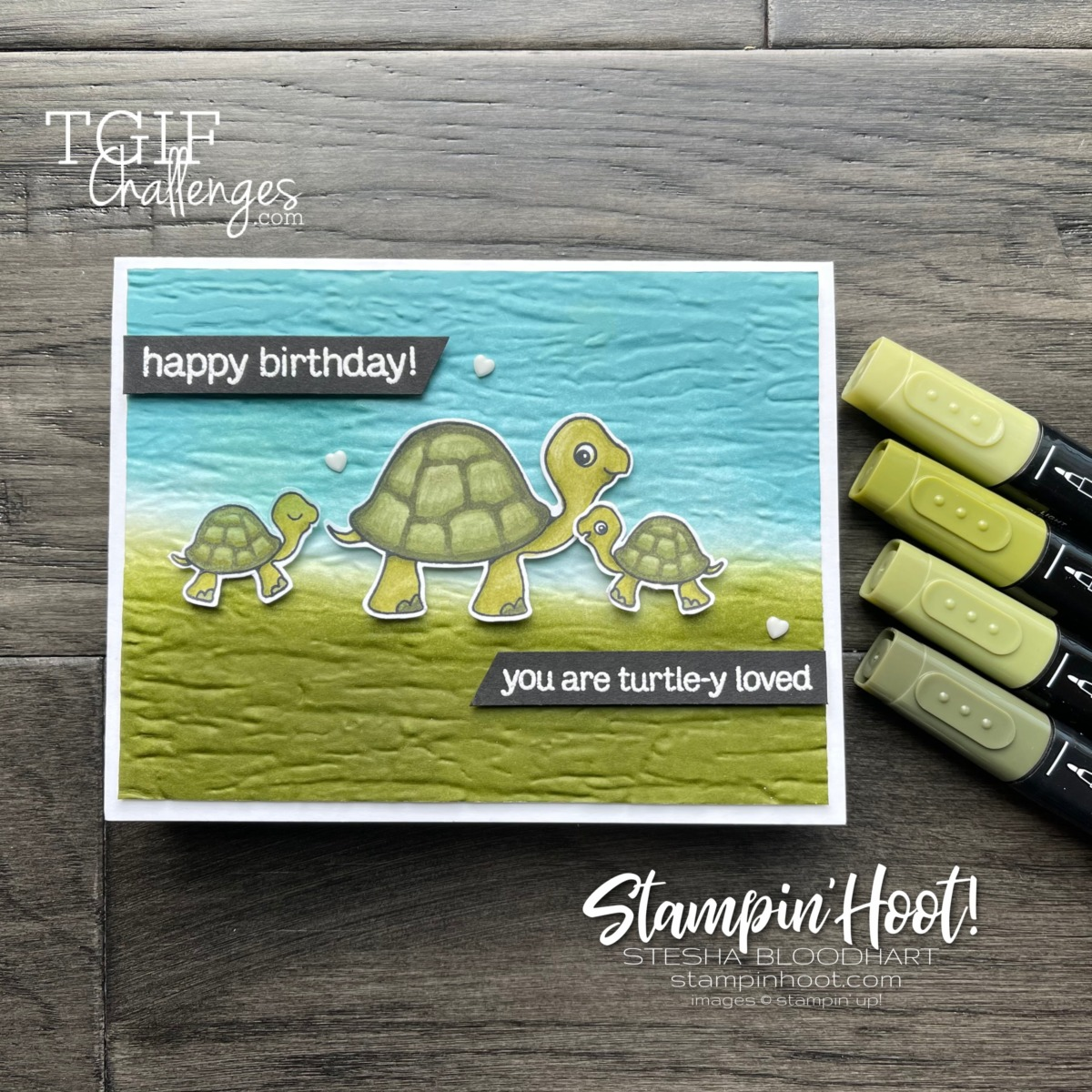 Create this card using Turtle Friends Bundle from Stampin Up Card by Stesha Bloodhart, Stampin Hoot #tgifc320