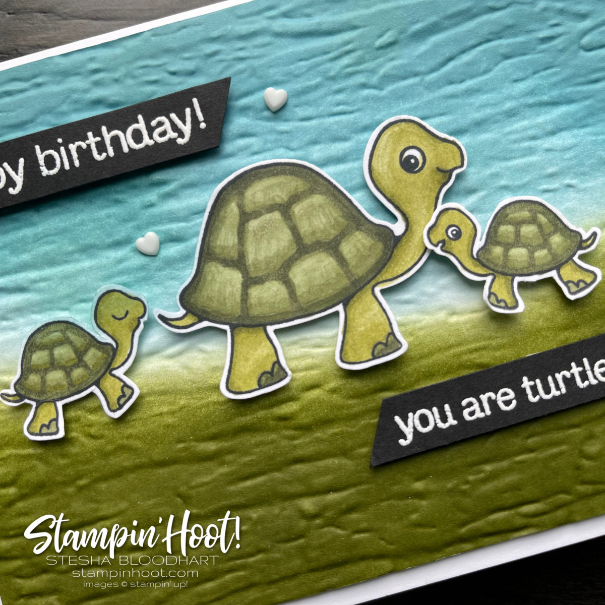 Create this card with the Turtle Friends Bundle from Stampin Up Card by Stesha Bloodhart, Stampin Hoot #tgifc320