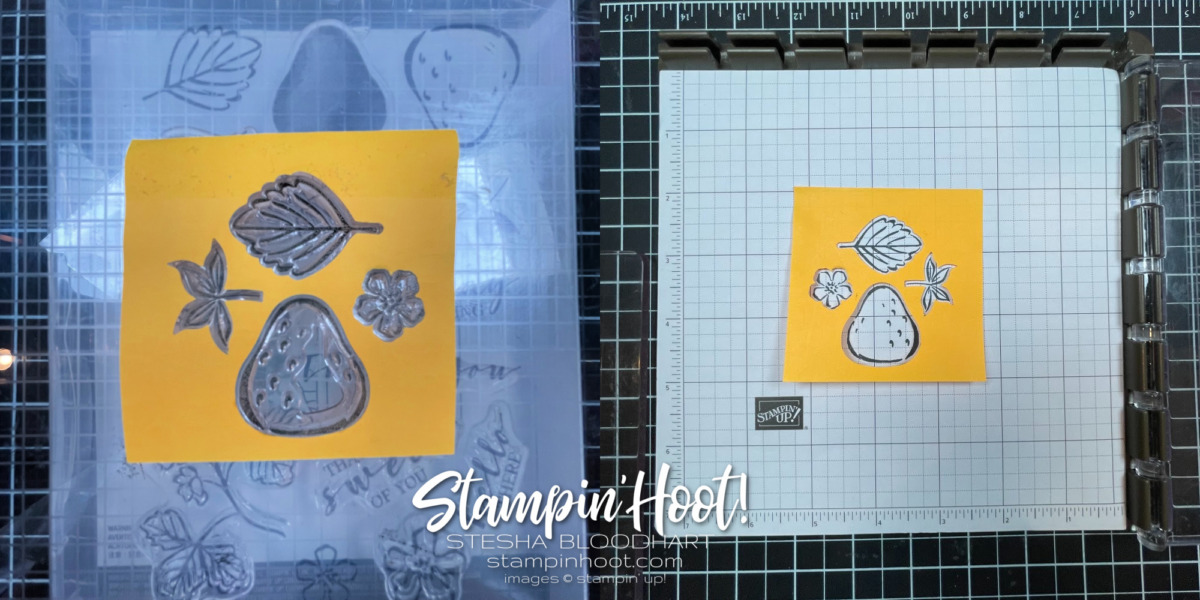 Stampin' Up! 2021-2023 In Colors - Stesha Bloodhart - Stampin' Hoot!