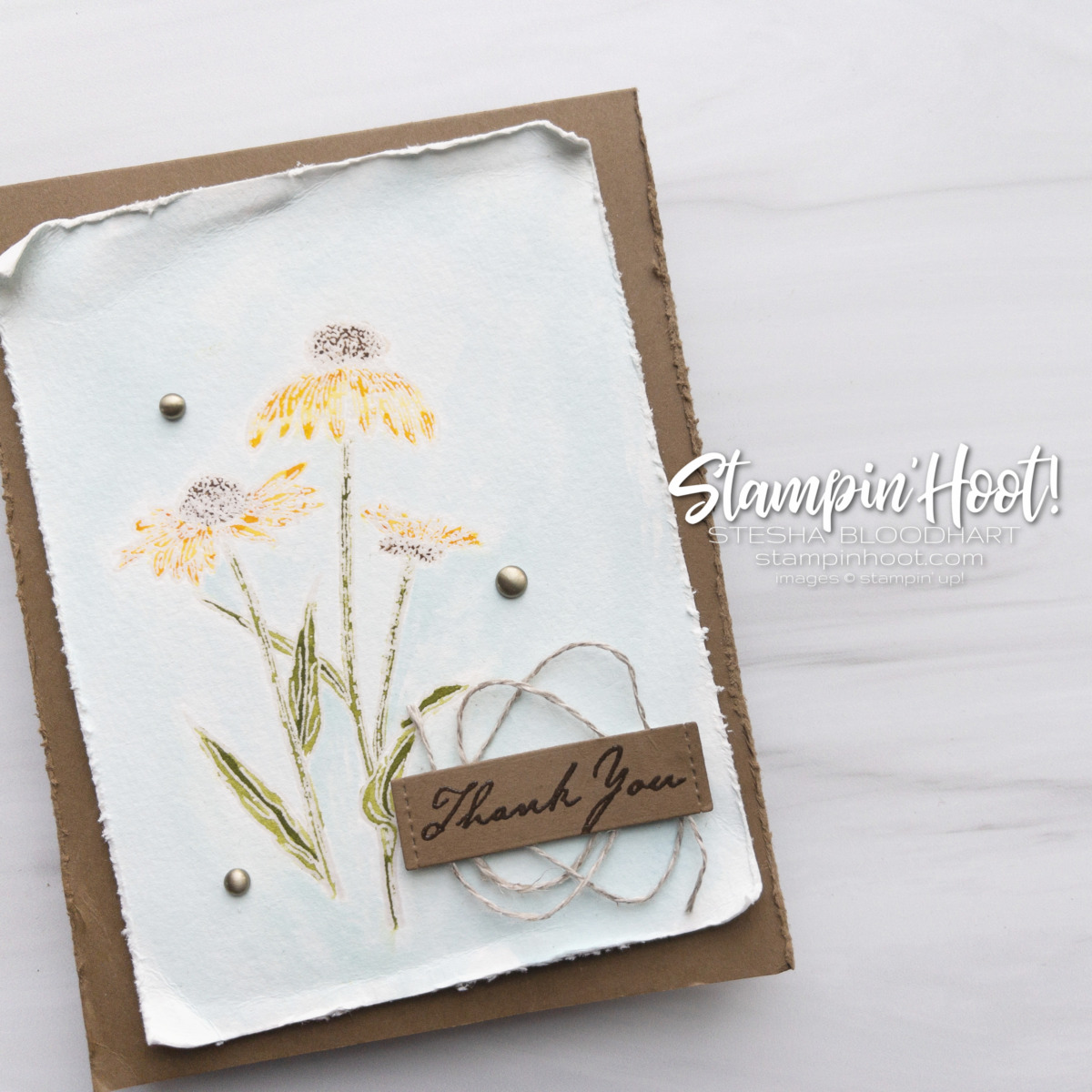 Nature's Harvest Stamp Set from Stampin' Up! Available August 3, 2021. Thank you card by Stesha Bloodhart Stampin' Hoot