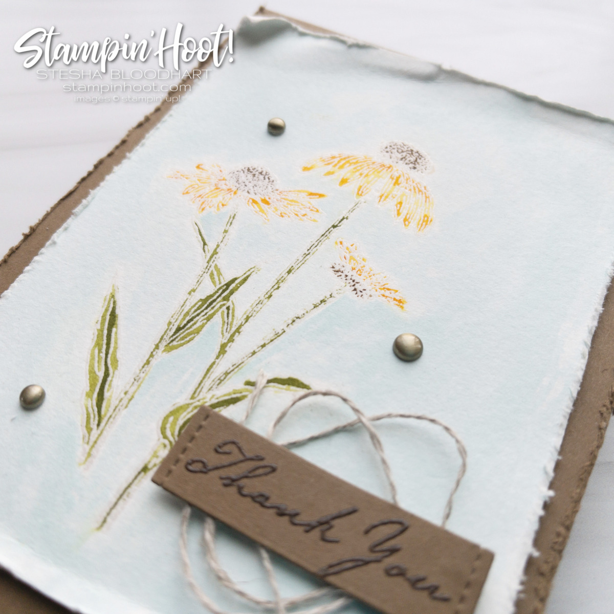 Nature's Harvest Stamp Set from Stampin' Up! Available August 3 Thank you card by Stesha Bloodhart Stampin' Hoot