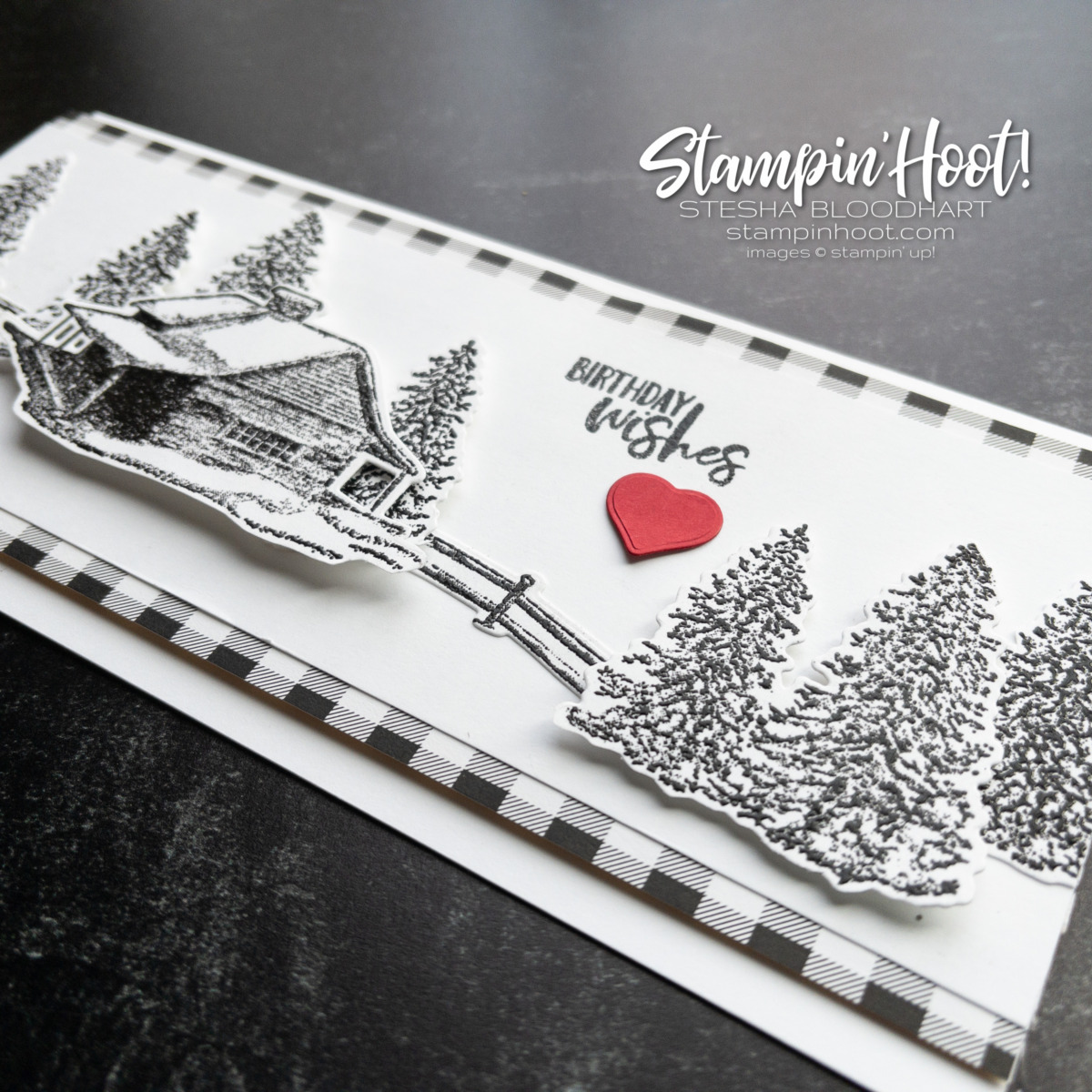 Create this black and white slimline birthday card using the Peaceful Cabin Bundle from Stampin' Up! Card by Stesha Bloodhart, Stampin' Hoot!
